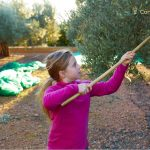 aceite de oliva para bebes con diarrea