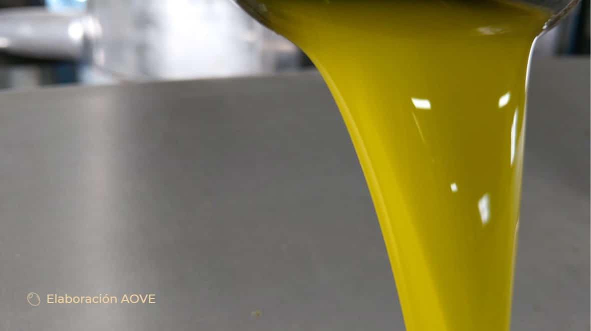 aceite de oliva elaboracion